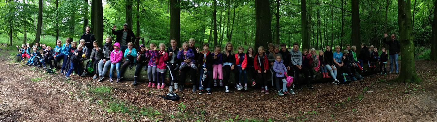 Skolen i skoven